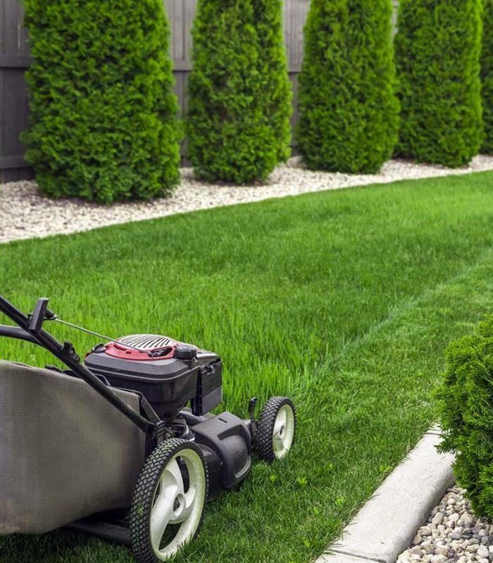 lawn-mower-on-grass-FQU7GR2
