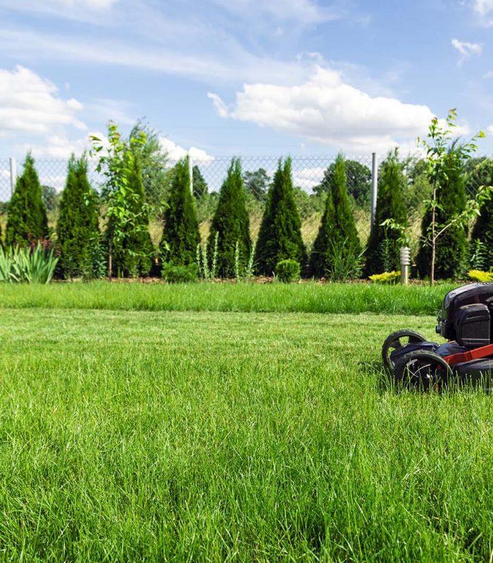 mowing-lawn-in-backyard-ZFEMN7R